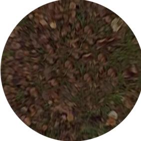 SnapShot1_patch